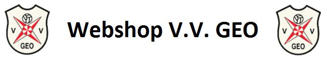 V.V. GEO