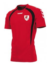 Trainingsshirt V.V.Niekerk